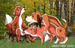 animal_sex copper disney lonewolf the_fox_and_the_hound tod todd vixey