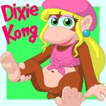 dixie_kong donkey_kong donkey_kong_(series) nintendo