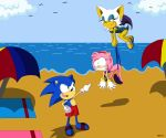 amy_rose beach bikini_pull bird blue_hair flying_wedgie hairband long_hair ocean one-piece_swimsuit pink_hair rouge_the_bat short_hair sonic sonic_the_hedgehog tail wedgie white_hair