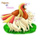 bird ninetales pidgeot pidgeotto pokemon sex