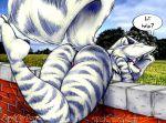 2009 ass eric_w._schwartz_(artist) furafterdark panties skunk thighs zig_zag