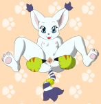 anus blue_eyes cat digimon feline gatomon inviting small_tits spread_legs spread_pussy tongue_out white_fur
