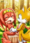 "1girl furry miles_""tails""_prower mobius_unleashed nipples sega sex tagme tails tikal_the_echidna"
