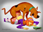 anal ass ass_up bestiality clothed cum cum_inside daphne_blake dog doggy_position drooling hairband panties panties_aside pantyhose penis red_lipstick redhair redhead sammy_rodger scooby scooby-doo shirt_lift stockings tail