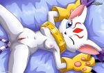 1girl collar digihentai digimon feline furry gatomon gatomon_x tagme