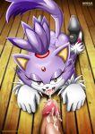 1girl blaze_the_cat furry mobius_unleashed sega tagme