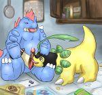 bayleef feraligatr nicobay pokemon