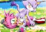 2girls amy_rose animal_ears ass blaze_the_cat blush breasts cat_ears cum cute furry gloves green_eyes hair mobius_unleashed multiple_girls palcomix pink_hair pussy short_hair smile sonic_(series) tail tongue yellow_eyes yuri