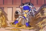 1girl angelofhapiness anthro barn blush bucket cosplay erection furry green_eyes half-closed_eyes hay hedgehog male mammal penis precum presenting sega sitting smile sonic_the_hedgehog spread_legs spreading