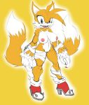 """1girl 1girl 2016 anthro areola big_breasts breasts canine crossgender erect_nipples fox furry high_res huge_breasts mammal miles_""""tails""""_prower nipples nude pussy sega slashysmiley soulteam werefox"""