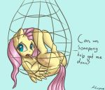 1girl 1girl 1girl 2014 alorpax anus color cutie_mark english_text equine feral fluttershy_(mlp) friendship_is_magic fur furry furry_only hair mammal my_little_pony net open_mouth pegasus pink_hair pussy signature tail text wings yellow_fur