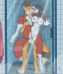 1girl anthro armpits balls big_breasts black_hair blue_eyes breasts brown_hair canine duo erect_nipples erection fox from_behind_position fuf furry hair kissing male male/female mammal nipples penis pussy pussy_juice saliva sex shower spread_legs spreading water wet