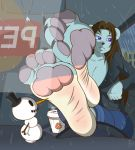 anthro bear beverage big_feet bobblehead brown_hair bulding car claws clothing coffee cup eve_froston_(zp92) feet foot_focus furry hair jacket jeans mammal pants pawpads paws polar_bear purple_eyes raining sitting snowman soles toes vehicle zp92