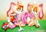2017 3_girls amy_rose cream_the_rabbit mobius_unleashed palcomix sex_toy sonic_x vaginal_penetration vanilla_the_rabbit