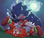 anal anal_penetration anthro balls duo echidna furry knuckles_the_echidna male male/male mammal monotreme penetration penis sega sonic_the_werehog werehog ziroro326