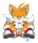 "1boy asking_for_it balls bedroom_eyes blue_eyes blush chest_tuft coolblue erection eyebrows fox gaping_anus gloves half-closed_eyes humanoid_penis legs_up miles_""tails""_prower multiple_tails presenting_anus sega shoes smile spread_anus sweat"