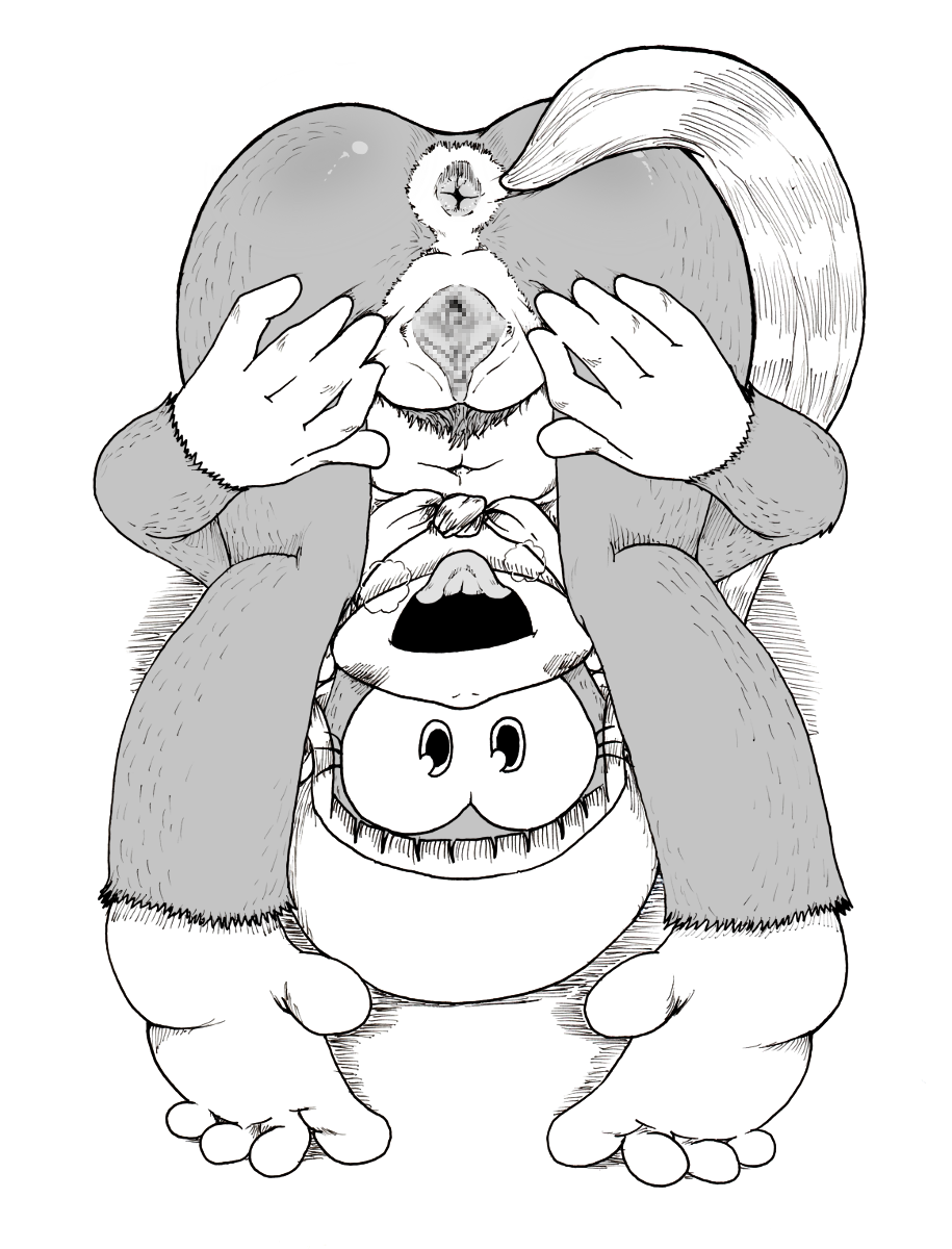 1girl 1girl 5_toes anus barefoot dixie_kong donkey_kong_(series) feral hair hat high_res long_hair mammal monkey monochrome nintendo open_mouth ponytail presenting primate pussy soles toes tongue tongue_out video_games メガシンシ