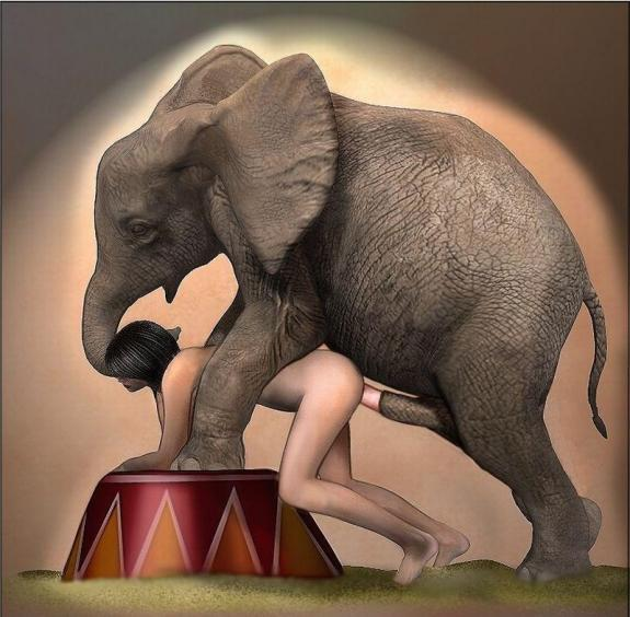 Elephant position girl sex — photo 3
