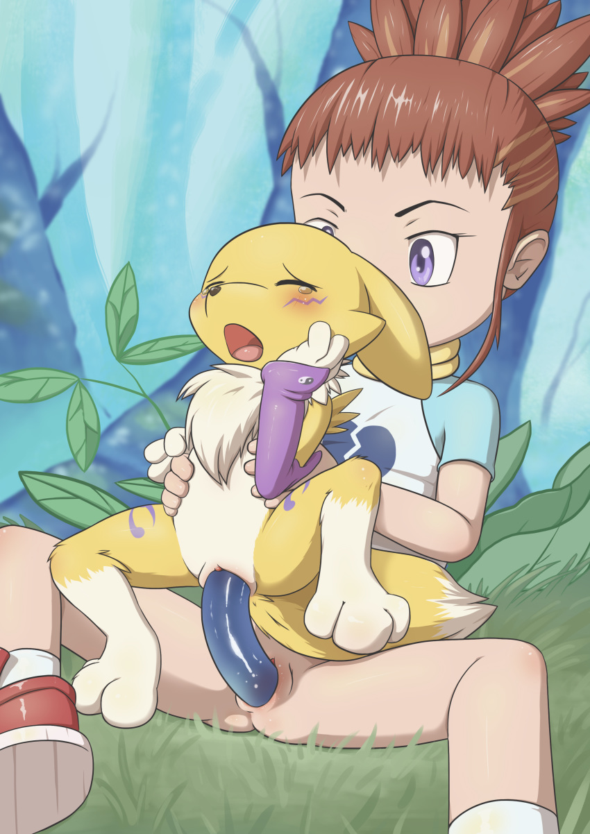 digimon-free-see-teen-video