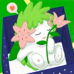 green_background pokemon shaymin tagme