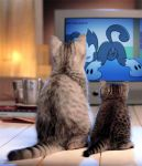 8horns animaniacs ass cat dot_warner pussy tail tv tv34