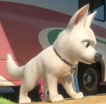 bolt disney dog tagme