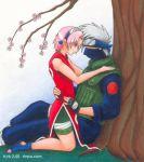 female kakashi_hatake male naruto sakura_haruno tagme