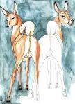 bambi deer disney faline klaus_doberman klaus_doberman_(artist)