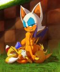 """ass big_breasts breasts condom facesitting femdom looking_back miles_""""tails""""_prower milf_vs_boy pussylicking rouge_the_bat sonic_the_hedgehog theboogie wings"""