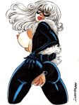 ass big_ass big_breasts black_cat breasts felicia_hardy fuckable insanely_hot marvel nipples pussy rob_durham rob_durham_(artist) spider-man