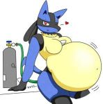 belly furry heart inflation lucario solo tagme