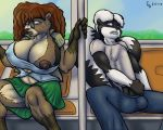 1girl 2010 anthro badger biting_lip black_penis breasts brown_hair brown_nipples bus clothed clothing eyewear furry glasses glenskunk hair hyper hyper_erection_under_clothes hyper_penis male mammal mustelid nipple_slip nipples pants penis penis_under_shirt shirt sitting skirt skunk wardrobe_malfunction white_hair