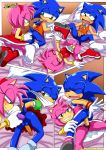 amy_rose comic mobius_unleashed palcomix sonic_the_hedgehog switch_it_up_(comic) tagme
