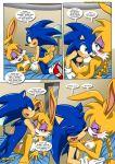 bunnie_rabbot mobius_unleashed palcomix sega sonic_(series) sonic_and_sally_break_up_(comic) sonic_the_hedgehog