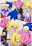 amy_rose mobius_unleashed palcomix sega sonic_the_hedgehog the_best_of_friends