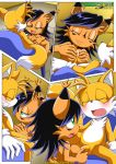 """happai_birthday miles_""""tails""""_prower mobius_unleashed nicole_the_lynx palcomix"""