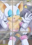 bbmbbf breast closed_eyes from_behind moan mobius_unleashed palcomix pink_nipples rouge_the_bat shadow_the_hedgehog sonic_(series) window