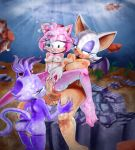 1girl amy_rose blaze_the_cat cat cum futanari hedgehog hintofmint rouge_the_bat sega sonic_(series) underwater